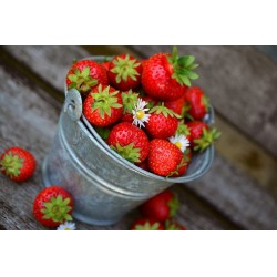confiture artisanale fraise